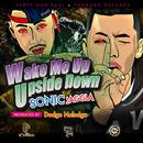 Wake Me Up Upside Down feat. JAGGLA/SONIC