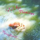 invisibleFlamingo/FlyingDoctor