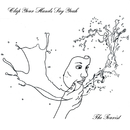 The Tourist/Clap Your Hands Say Yeah