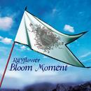 Bloom Moment/Rayflower