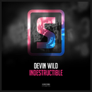 Indestructible/Devin Wild