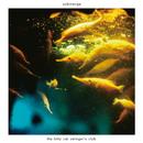 submerge/the kitty cat swinger's club