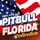 BEST HITS feat. PITBULL & FLO RIDA COLLECTION/V.A.