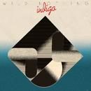 INDIGO/Wild Nothing