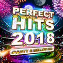 PERFECT HITS 2018 -PARTY & MELLOW MIX-/V.A.