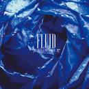 FLUID/HOLLOWGRAM