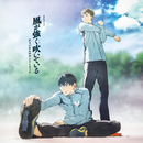 TVアニメ「風が強く吹いている」オリジナルサウンドトラック/林 ゆうき