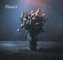 FLOWER/JAZZ RIVER LIGHT