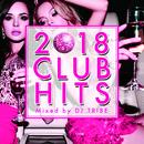 2018 CLUB HITS mixed by DJ TRIBE/DJ TRIBE