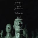 BLIND WATCHMAKER/HOLLOWGRAM