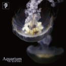 Aquarium/呼煙魔