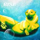 RISE/DOTAMA