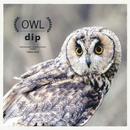 OWL/DIP