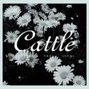 somehow hear songs./cattle