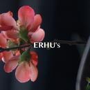 ERHU's ~ GHIBLI MUSIC/worldwide music ave.