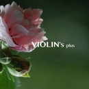 VIOLIN's plus ~ GHIBLI MUSIC (jazzy)/worldwide music ave.