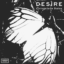 DESIRE/Livingstone Daisy
