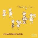MELODYFAIR/Livingstone Daisy