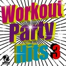 Workout Party Hits 3/V.A.