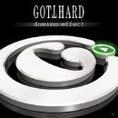DOMINO EFFECT/GOTTHARD