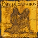 REMEDY LANE/PAIN OF SALVATION