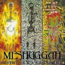 DESTROY ERASE IMPROVE/Meshuggah
