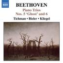 ベートーヴェン: ピアノ三重奏曲集 第1集 - ピアノ三重奏曲第5番 「幽霊」/第6番/創作主題による14の変奏曲変ホ長調/ジリオン・トリオ