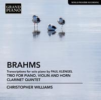 ブラームス: ホルン三重奏/クラリネット五重奏曲(ピアノ編)