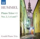 フンメル: ピアノ三重奏曲集 第1集/グールド・ピアノ・トリオ