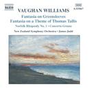 ヴォーン・ウィリアムズ: グリーンスリーヴスによる幻想曲/タリスの主題による幻想曲/他/ジェイムス・ジャッド(指揮)/ニュージーランド交響楽団