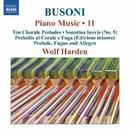 ブゾーニ: ピアノ作品集 第11集/ヴォルフ・ハーデン(ピアノ)