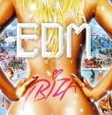 EDM Fiesta - IBIZA (Mixed by JaicoM Music)/Various Artists
