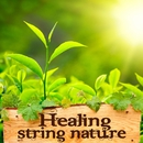 Healing String Nature -癒しの音色-/Various Artists