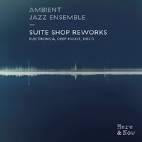 Suite Shop Reworks - Electronica, Deep House, Disco -