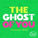 The Ghost Of You (WIlmaaa!! Remix)/Caro Emerald
