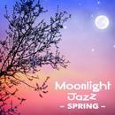 Moonlight Jazz  - Spring/Various Artists