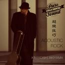 超絶技巧ギター - ACOUSTIC ROCK/秋山公良