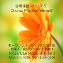 合唱練習シリーズ5 モーツァルト/「フィガロの結婚」より「娘達よ、喜びのうちに花を撒け」/石山正明