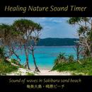 奄美大島・崎原ビーチの波音と初夏のさえずり(自然音) for 快音耳栓(ヒーリング・ネイチャーサウンドタイマー)(ヒーリング・ネイチャーサウンドタイマー)/Japan Premier Sound