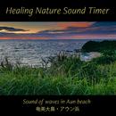 奄美大島・アウン浜・リーフの中の波音と小鳥たち(自然音) for 快音耳栓(ヒーリング・ネイチャーサウンドタイマー)(ヒーリング・ネイチャーサウンドタイマー)/Japan Premier Sound