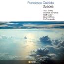 SPACES/FRANCESCO CATALDO