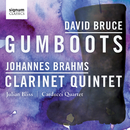 David Bruce: Gumboots/Julian Bliss; Carducci String Quartet