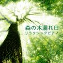 森の木漏れ日 ~リラクシングピアノ~/Relax α Wave