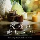 究極の癒しスパ ~Relaxing Your Body & Mind~/Relax α Wave