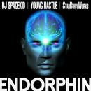 ENDORPHIN (feat. YOUNG HASTLE)/DJ SPACEKID