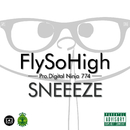 FLY SO HIGH/SNEEEZE