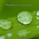Brightness of nature/Mana&HIRO