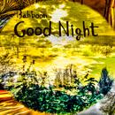 Good Night/Bahboon