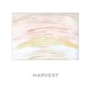 HARVEST/観音クリエイション