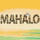 ハレアカラ ~Aloha Music Life~/ChieBand & Laule'a Artists